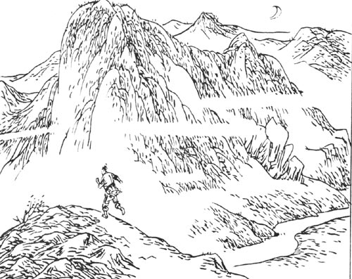 鹦鹉简笔画手绘